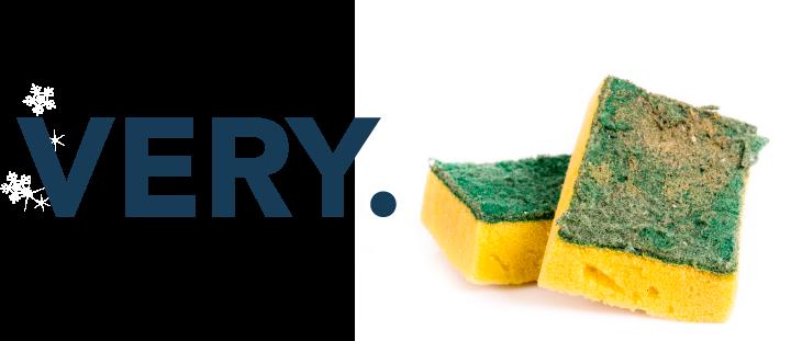 Your kitchen sponge is very gross.